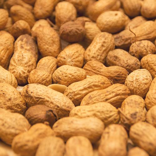 cacahuetes-catalogo